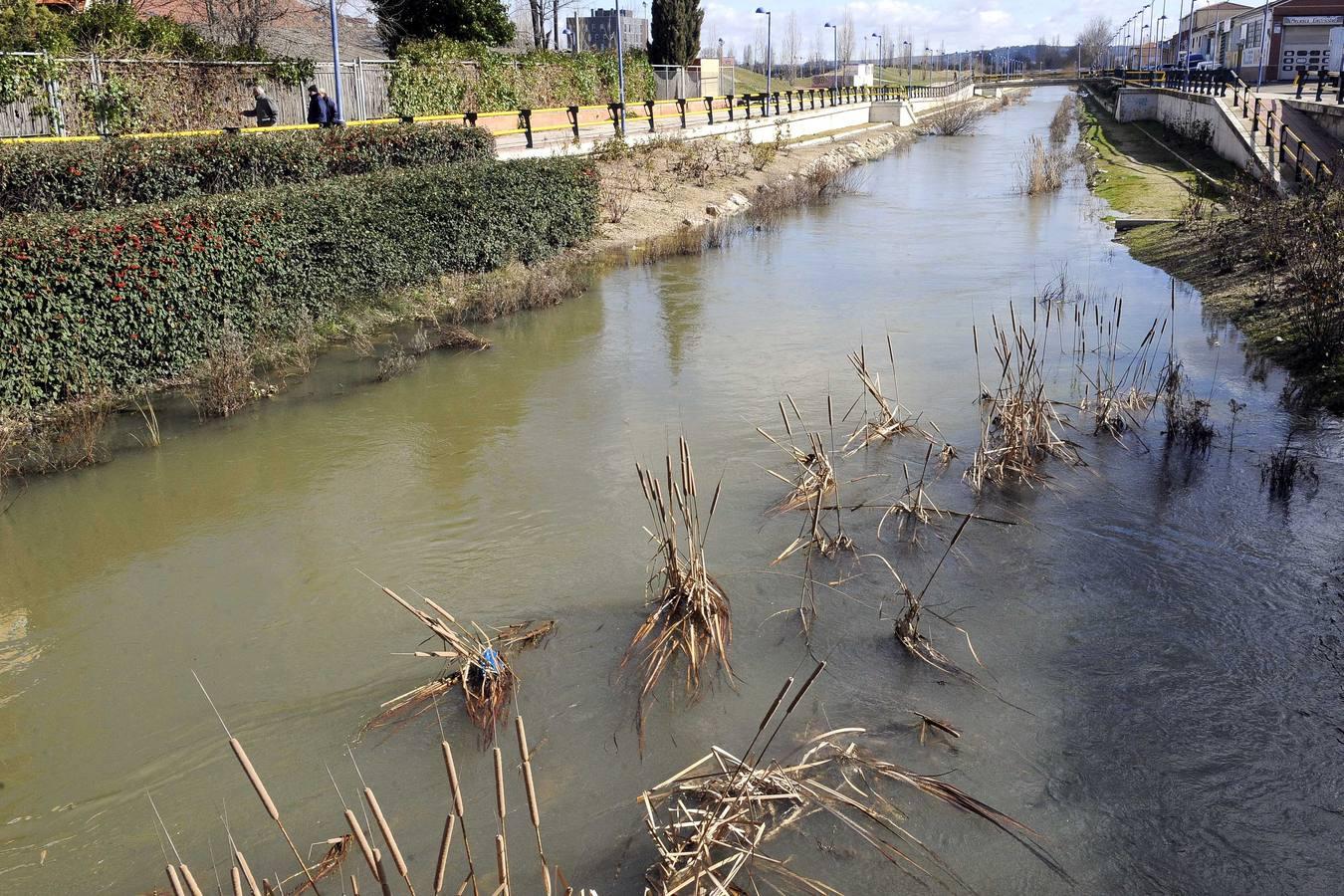 Crecida del río Esgueva a su paso por Valladolid