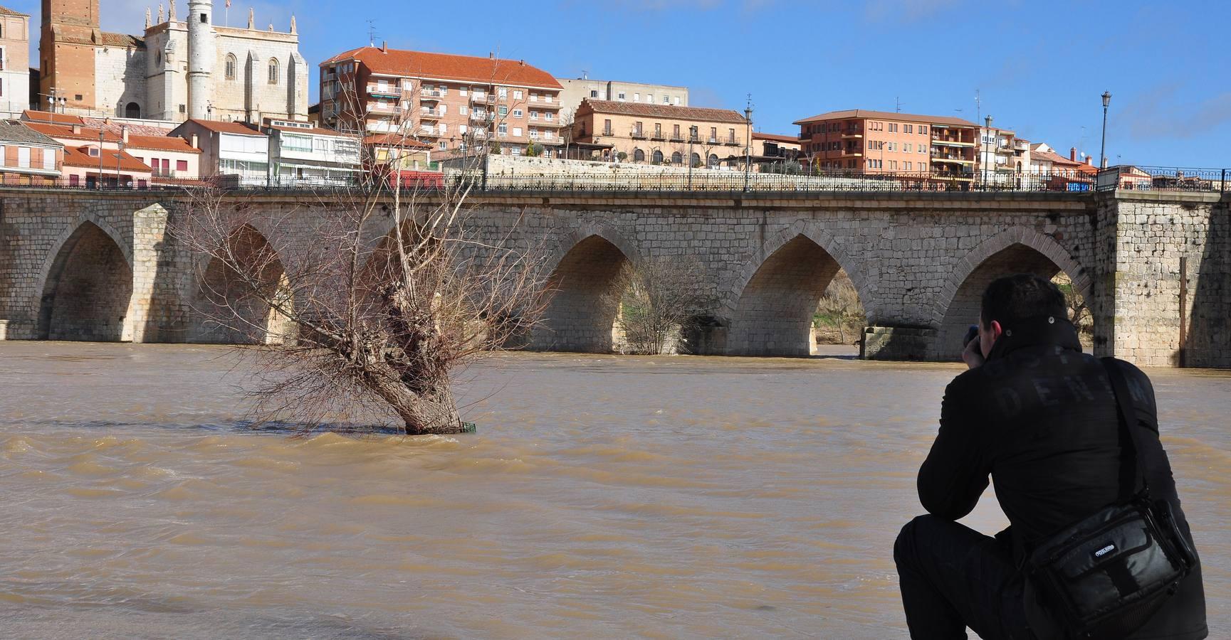 Crecida del río Duero a su paso por Tordesillas