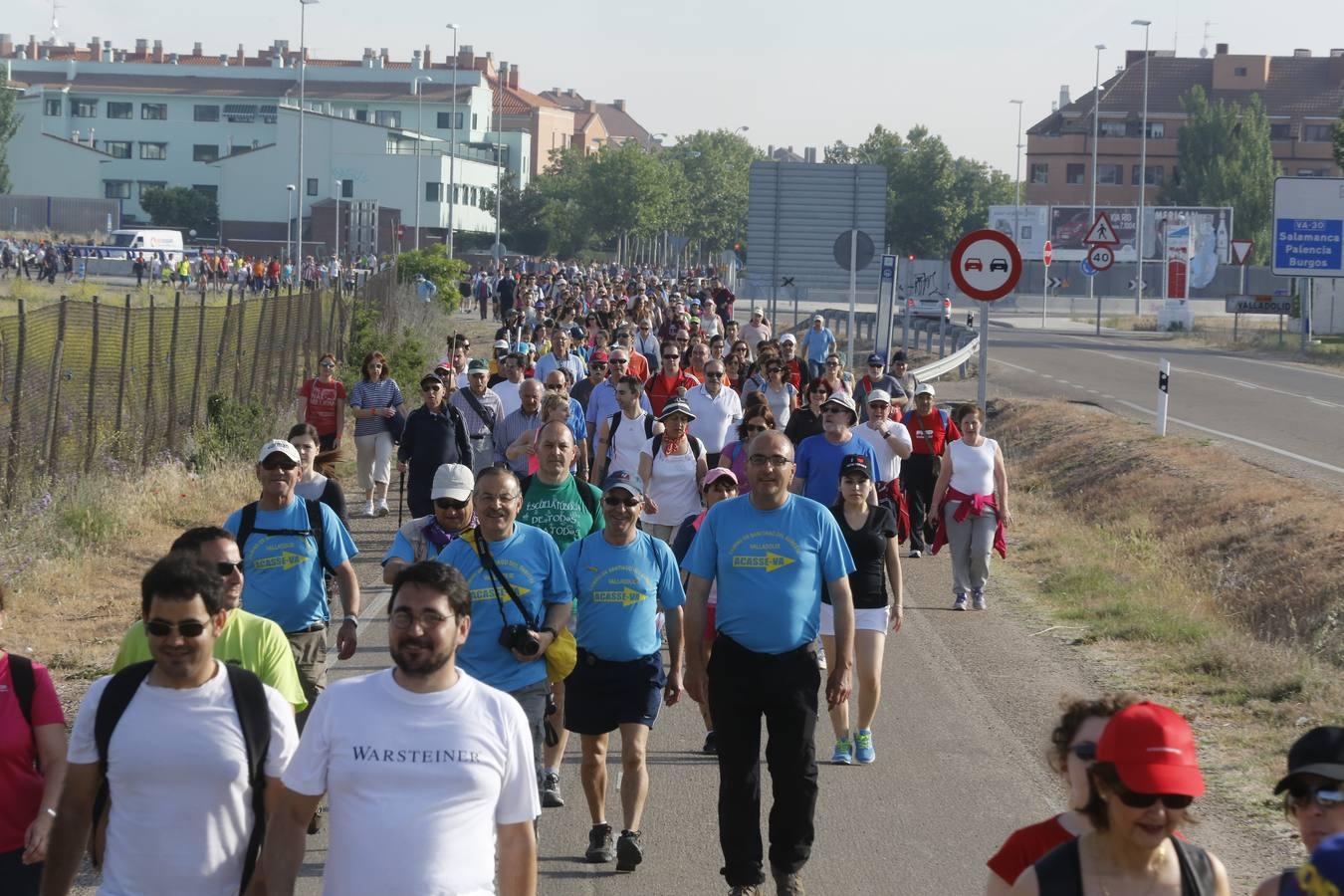 Marcha Asprona 2014 en Valladolid (4/15)