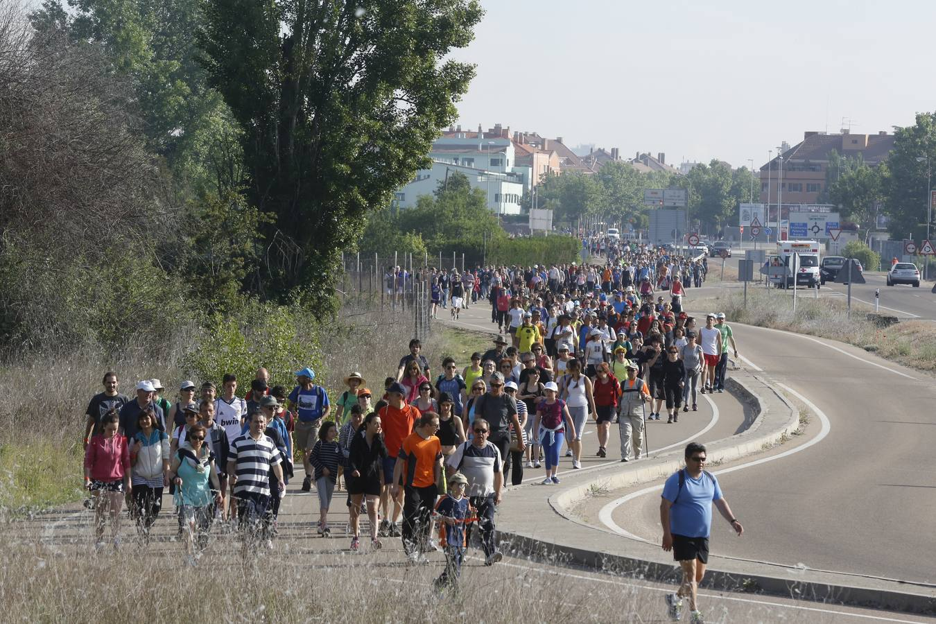 Marcha Asprona 2014 en Valladolid (5/15)