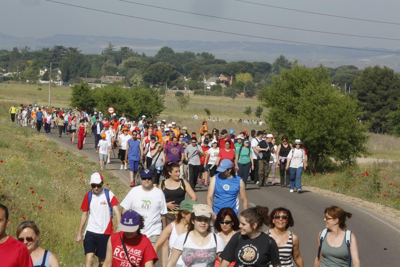 Marcha Asprona 2014 en Valladolid (11/15